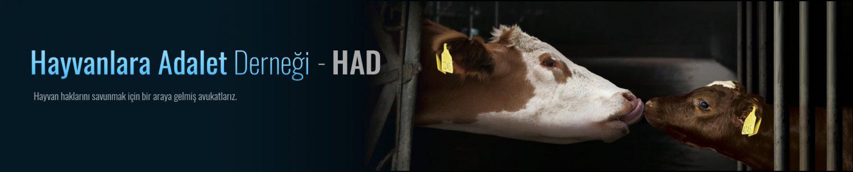 Hayvanlara Adalet Derneği - HAD